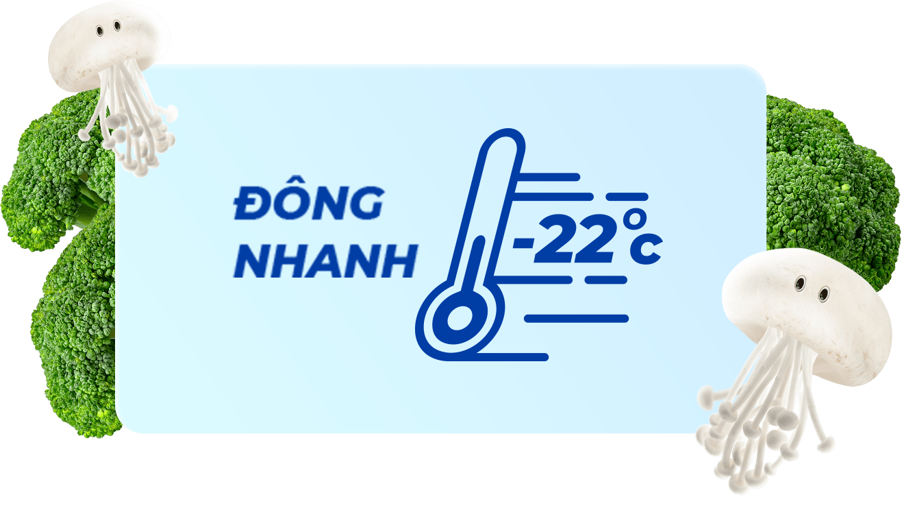 Đông Nhanh -22°C